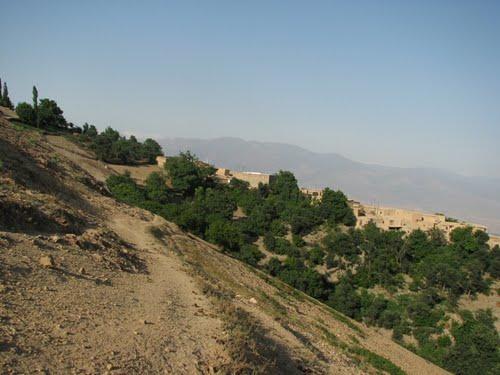 روستای کلوچ