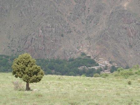 روستای ولیس